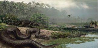 Serpientes gigantes de la mitología Amazónica