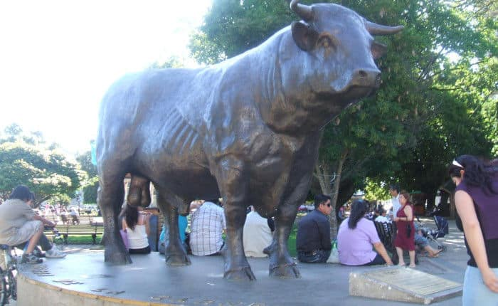 Vacas sagradas - Santuarios Tenmangu