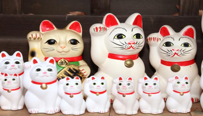 Gatos - Maneki Neko