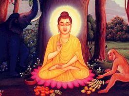 dioses budistas